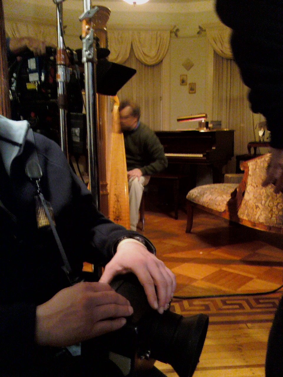 Mia's vintage style 15 Lyon and Healy harp