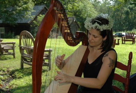 harp, flowers and a field