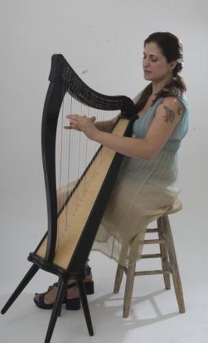 A Fairy Harpist!